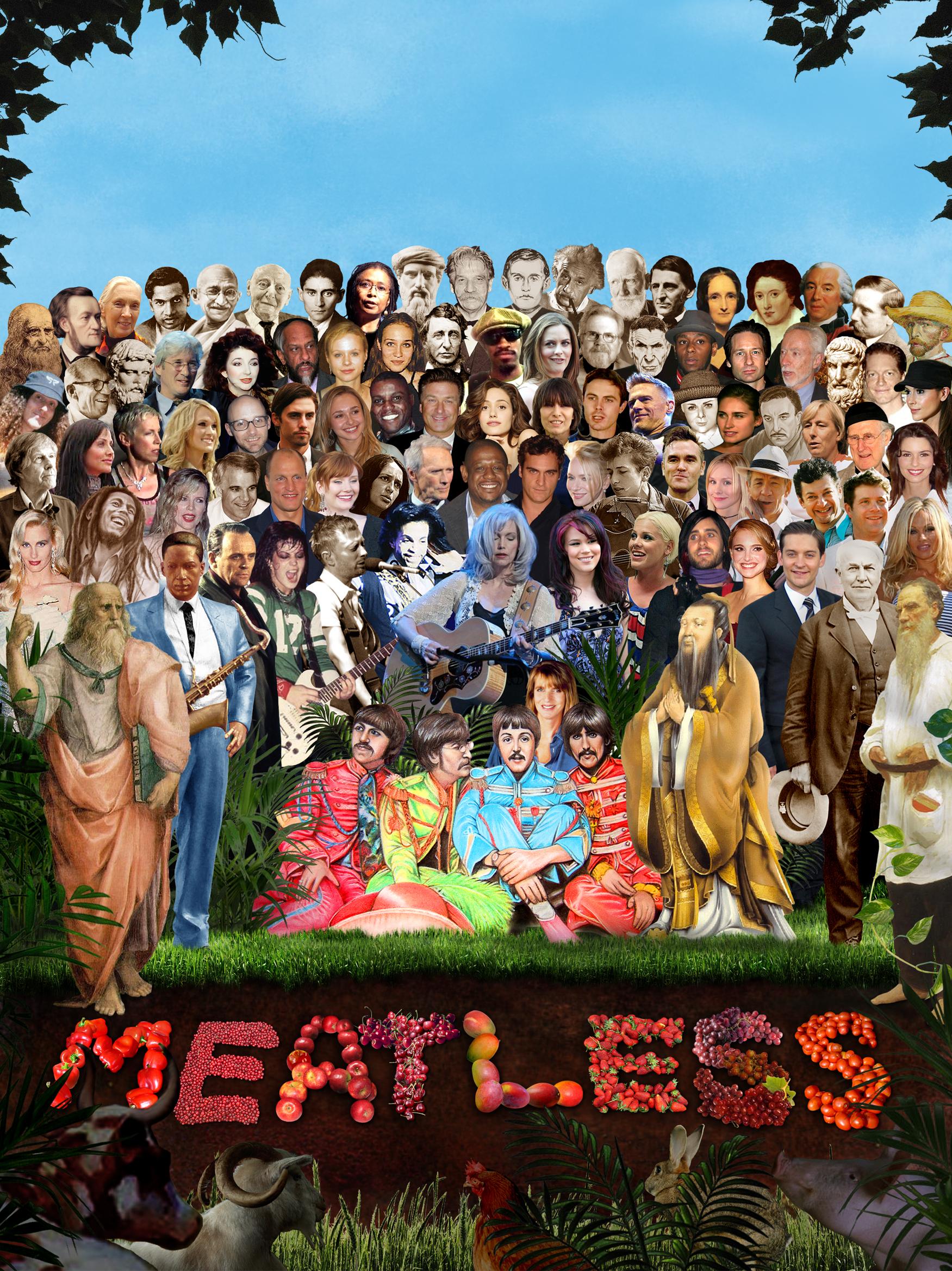 Meatless bilde
